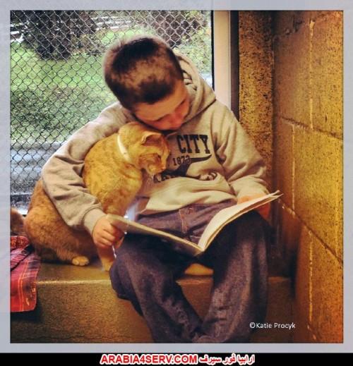 صور اطفال مع قطط 3